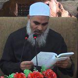 شیخ محمد المنشد